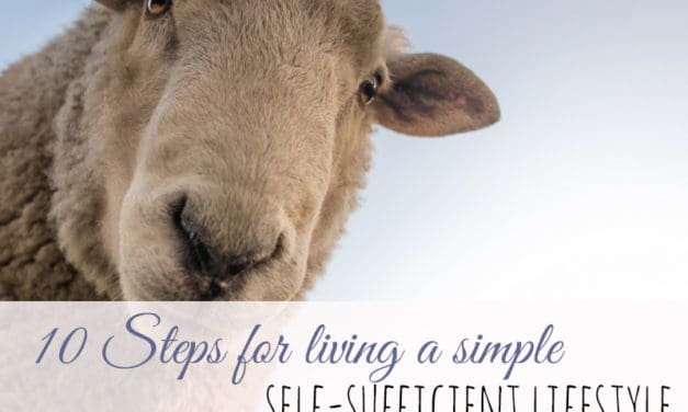 10 Steps for Living a Simple Self-sufficient Lifestyle