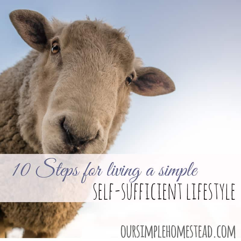 10 Steps to Living a Simple Self-sufficient Lifestyle