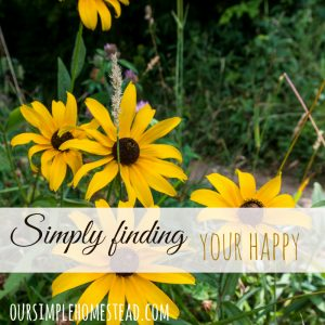 Finding Your Happy