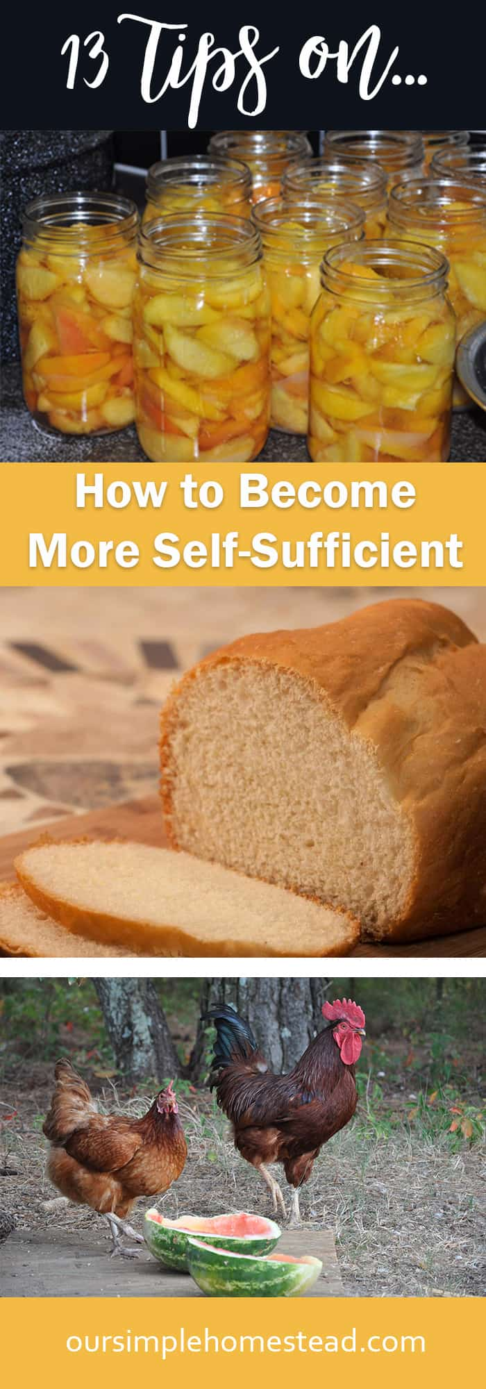 How to become more self-sufficient