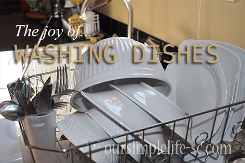 The joy of washing dishes