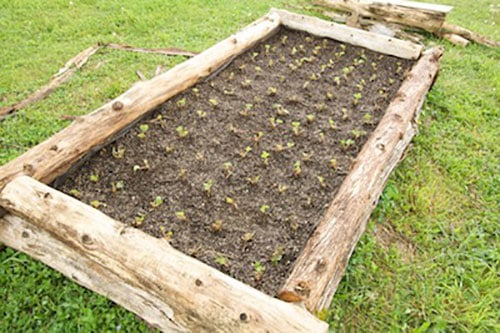 How to a build a cheap raised garden bed - Build raised garden bed cheap ...