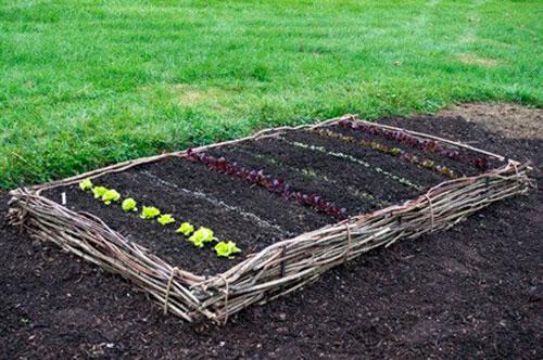 twig garden bed