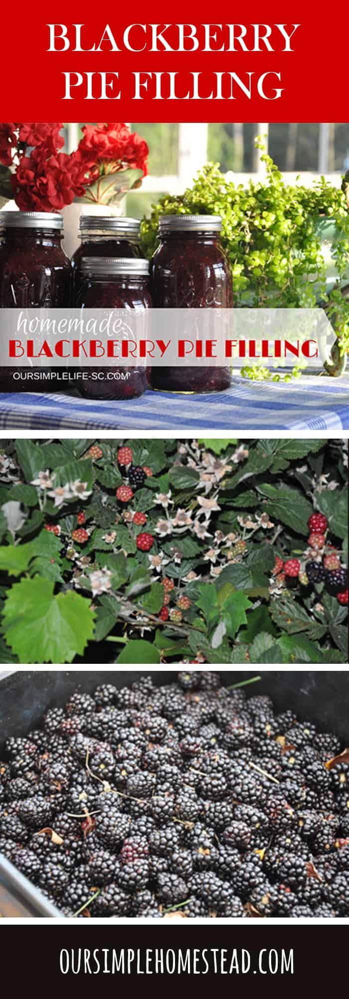 Blackberry Pie Filling Recipe - The Taste of Summer in a Jar