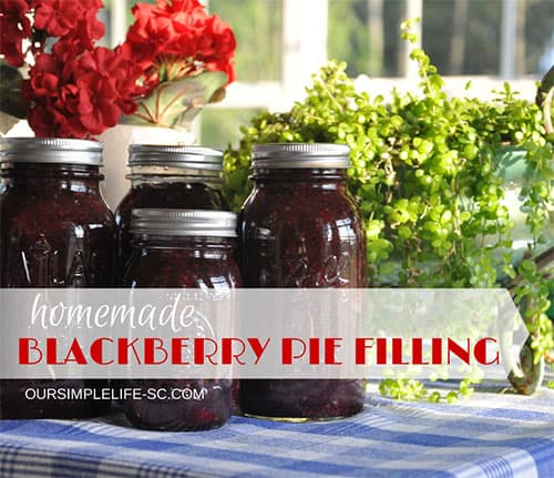 Blackberry Pie Filling Canning Recipe