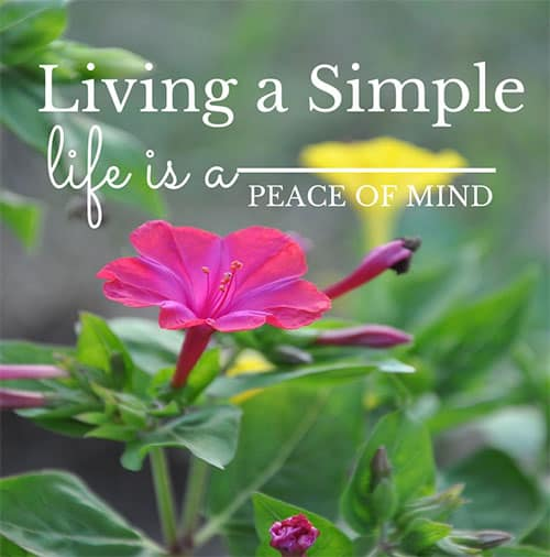 Living a simple life is a state of mind