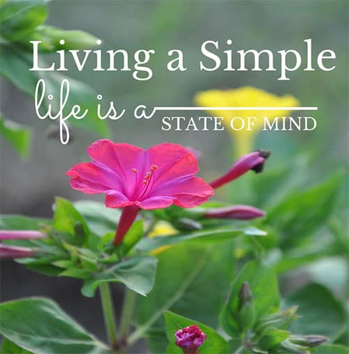 living simple is a state of mind