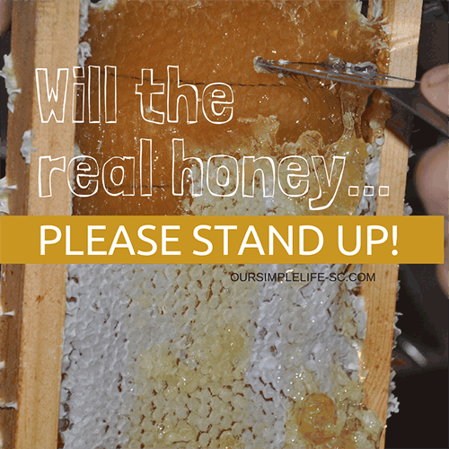 Will the real honey please stand up