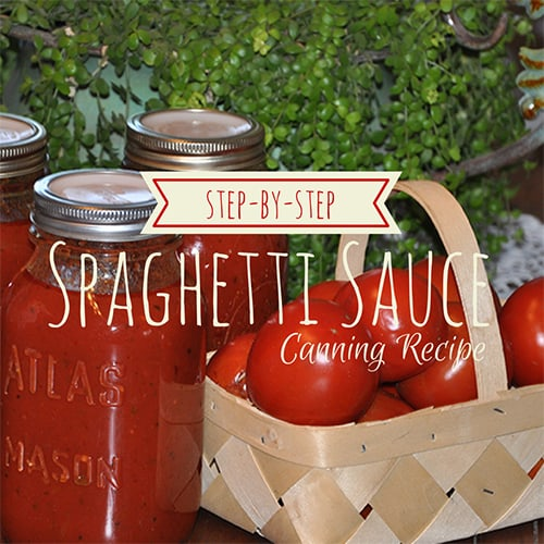 Canning Spaghetti Sauce – Step-by-Step Instructions