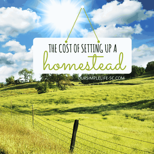 cost of homesteading