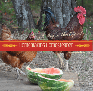 homemaking homesteader
