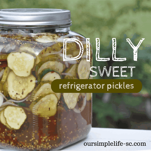 How to make pickles without canning