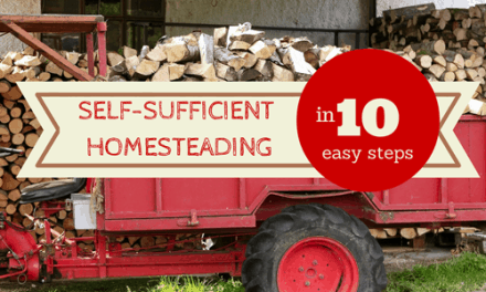 Self Sufficient Living in 10 Easy Steps