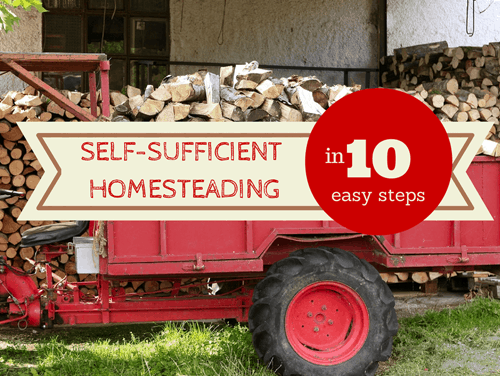 Self-Sufficient Homesteading in 10 Easy Steps