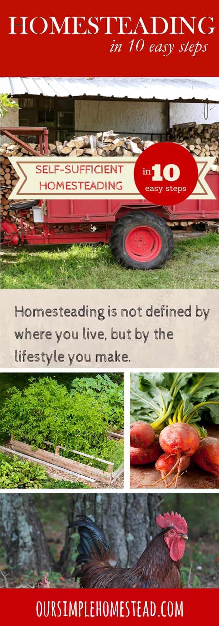 self sufficient living on a homestead in 10 easy steps