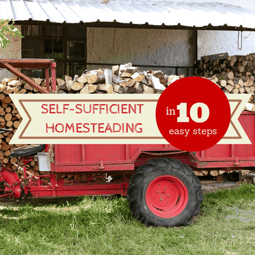 self-sufficient homesteading