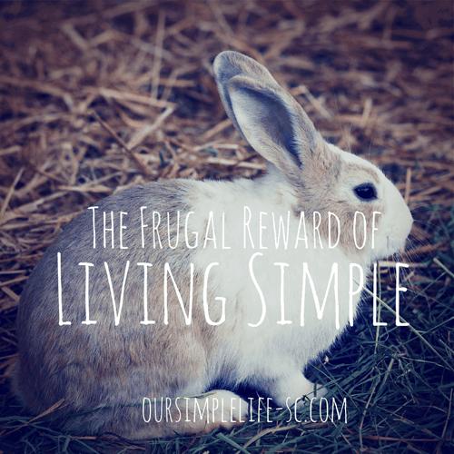 The Frugal Reward of Living Simple