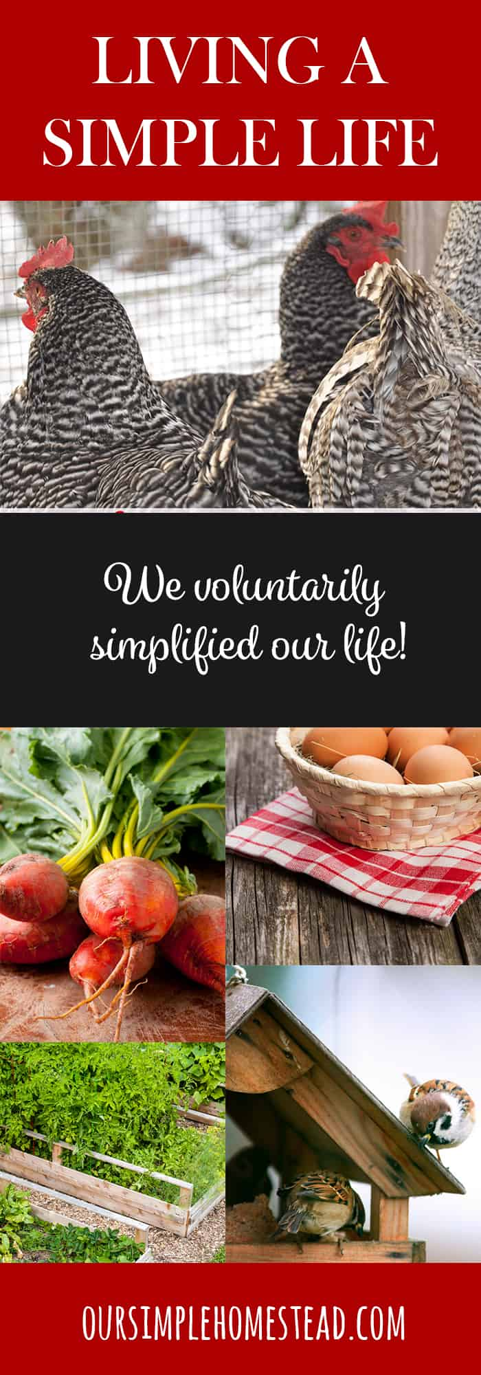 living a simple life The art of simple living, matt bell - christian finances, money management and financial help from a biblical perspective debt, planning, budgeting, investing and more.
