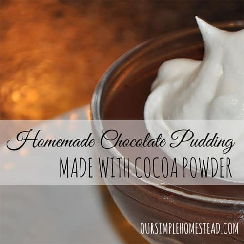 Homemade Chocolate Pudding made with Cocoa Powder