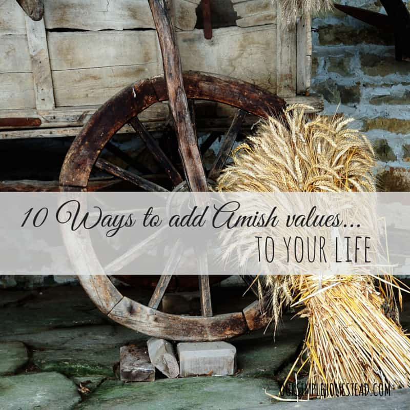 10 Ways to Add Amish Values to Your Life
