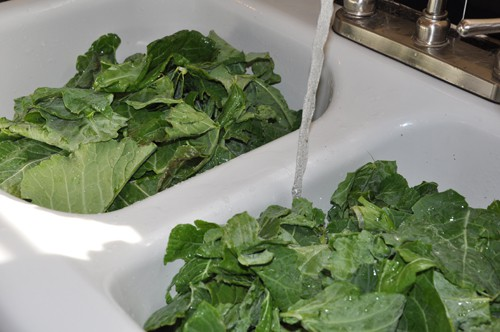 wash collard greens