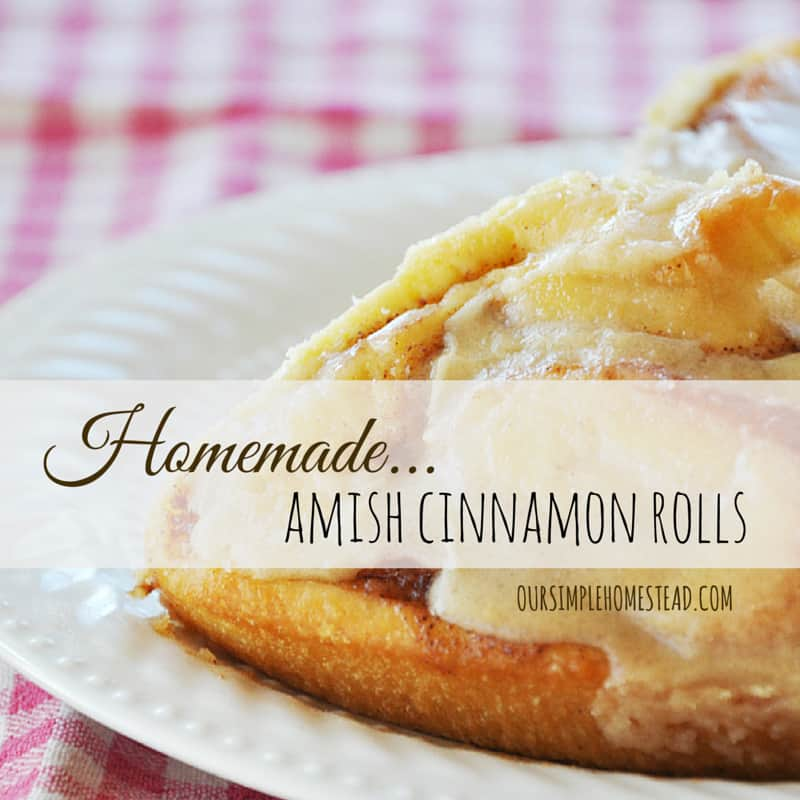 Old Fashion Amish Cinnamon Rolls