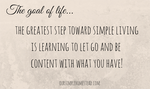 The goal of life...