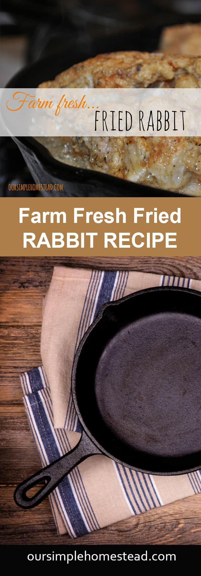 Fried Rabbit Recipe