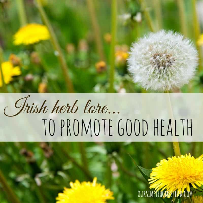 Irish Herb Lore to Promote Good Health