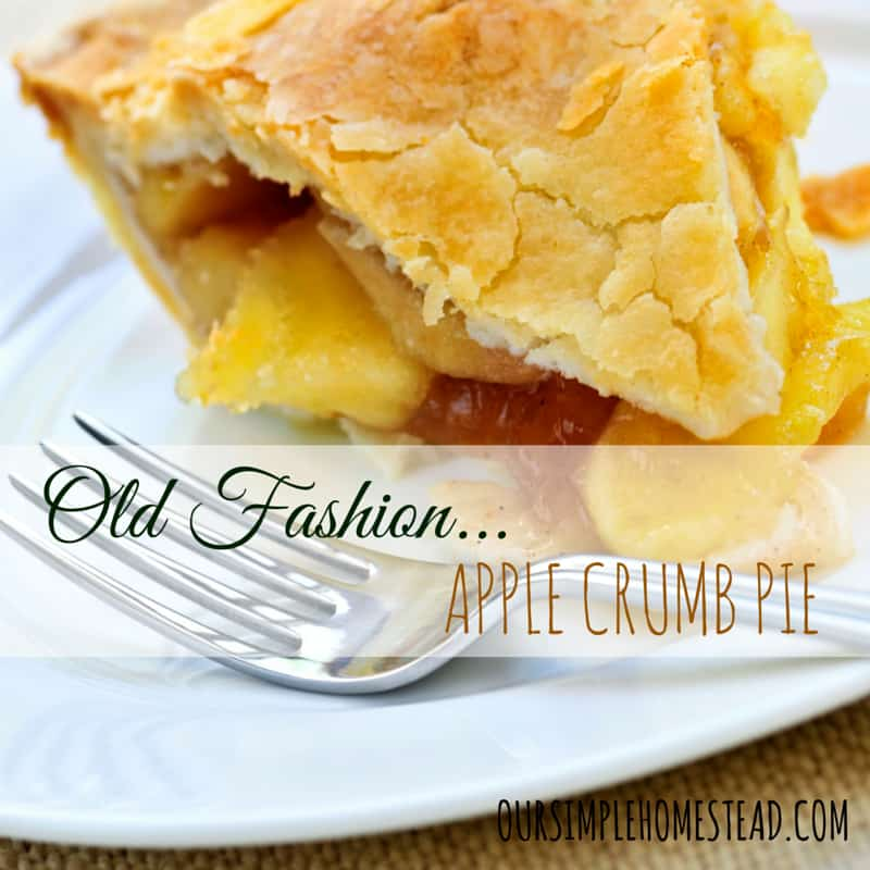 Old Fashion Apple Crumb Pie