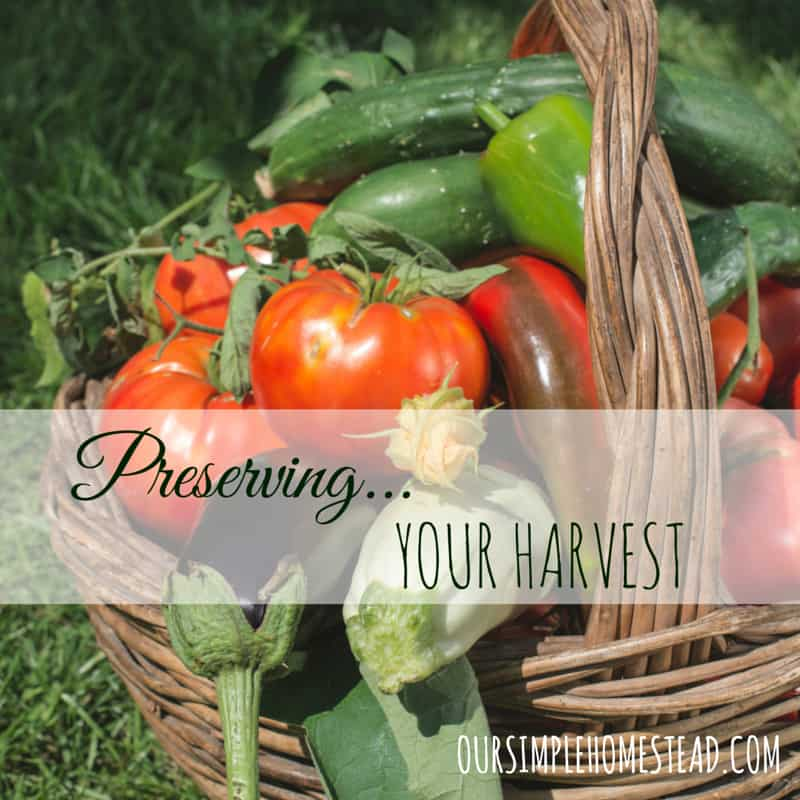 Preserving Vegetables – Harvesting Your Garden