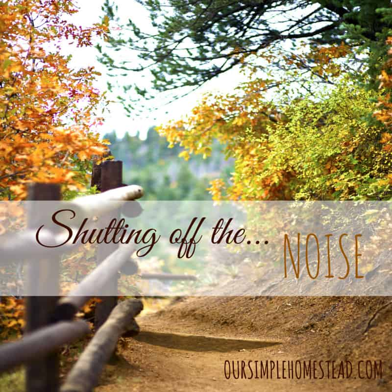 Shutting off the Noise
