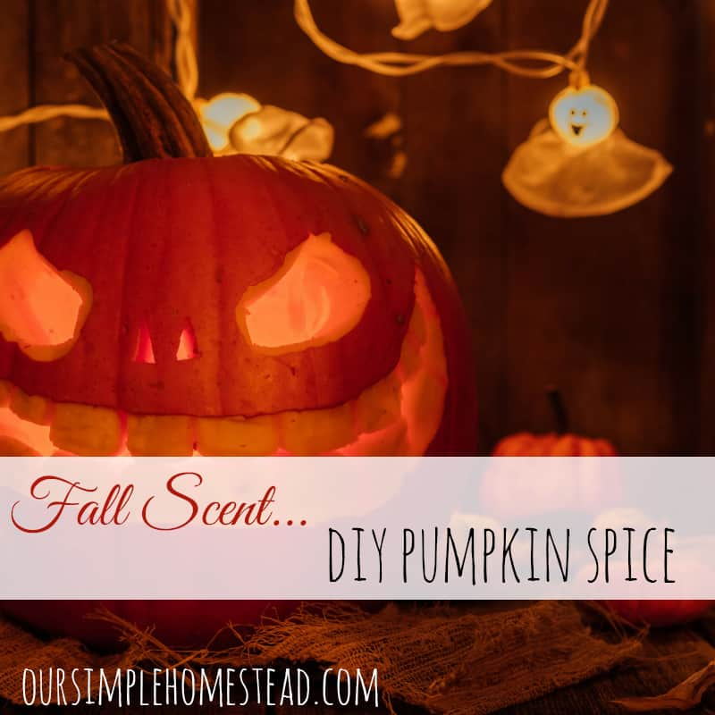 Fall Scents – Add the Smell of Fall to Your Home