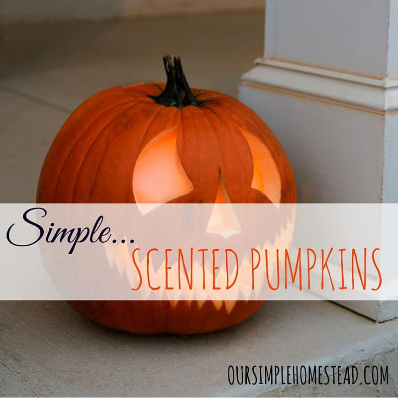 Simple Scented Pumpkin