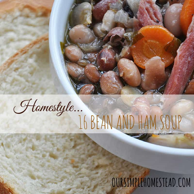 Homestyle 16 Bean and Ham Soup