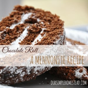 Homemade Chocolate Roll