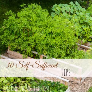Self-Sufficient Living Tips