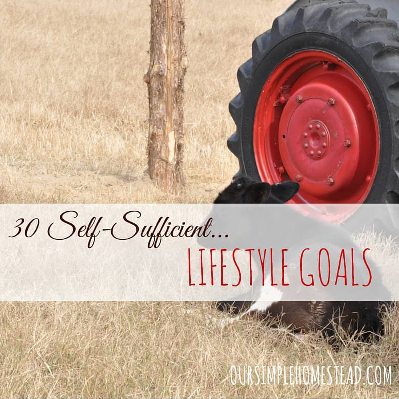 30 Self-Sufficient Lifestyle Goals