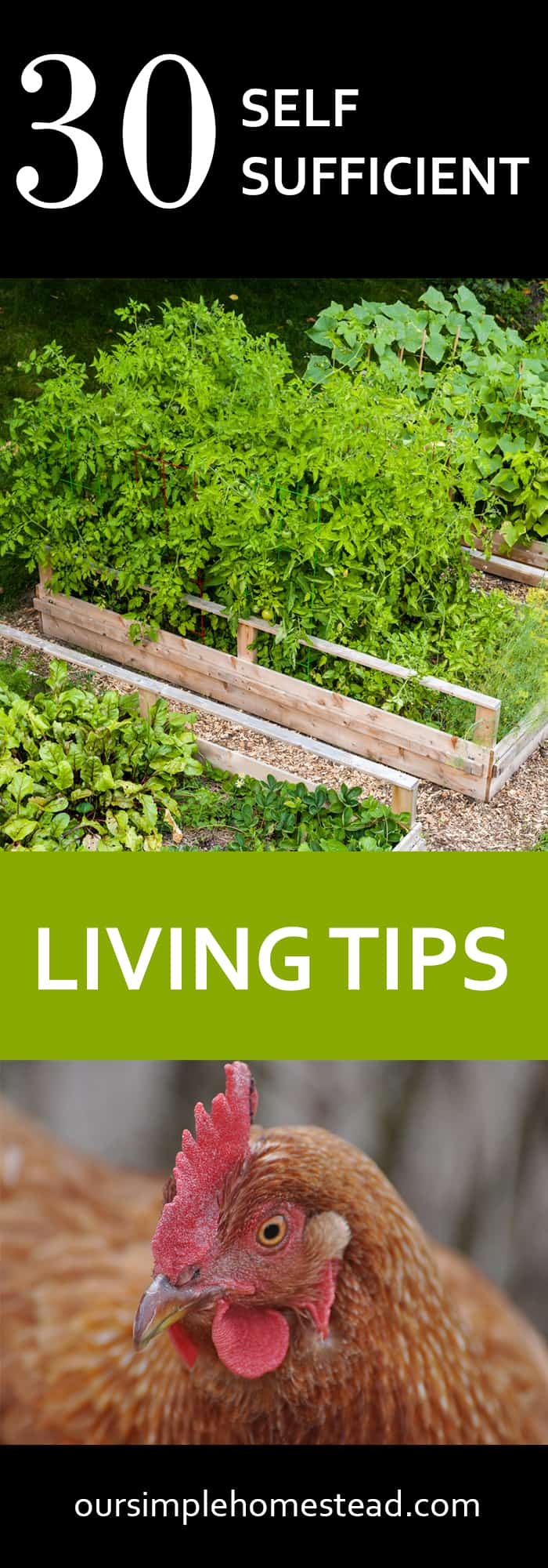 30 Self-Sufficient Living Tips