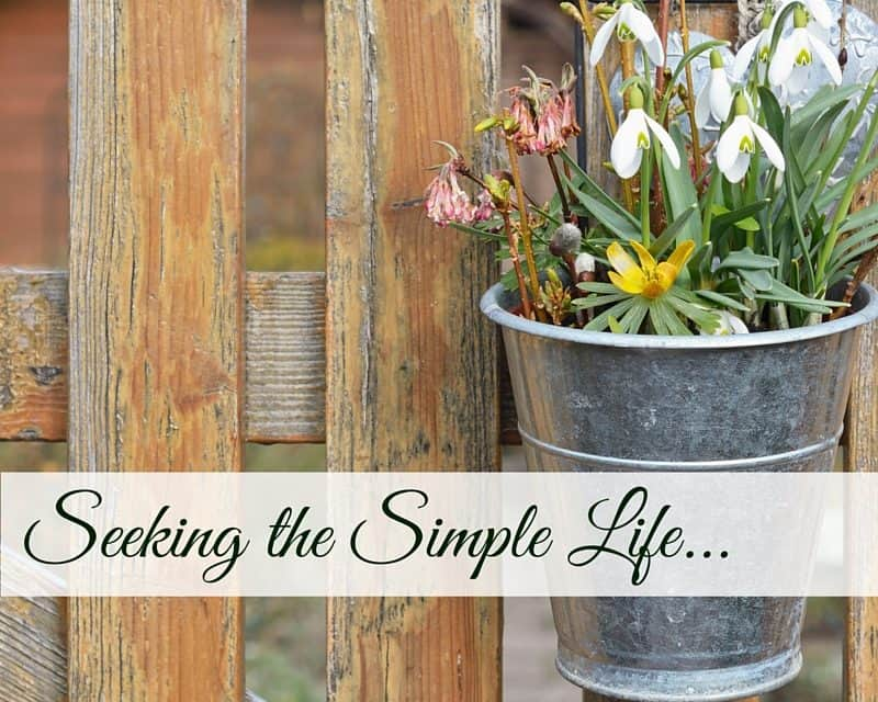 Seeking the Simple Life
