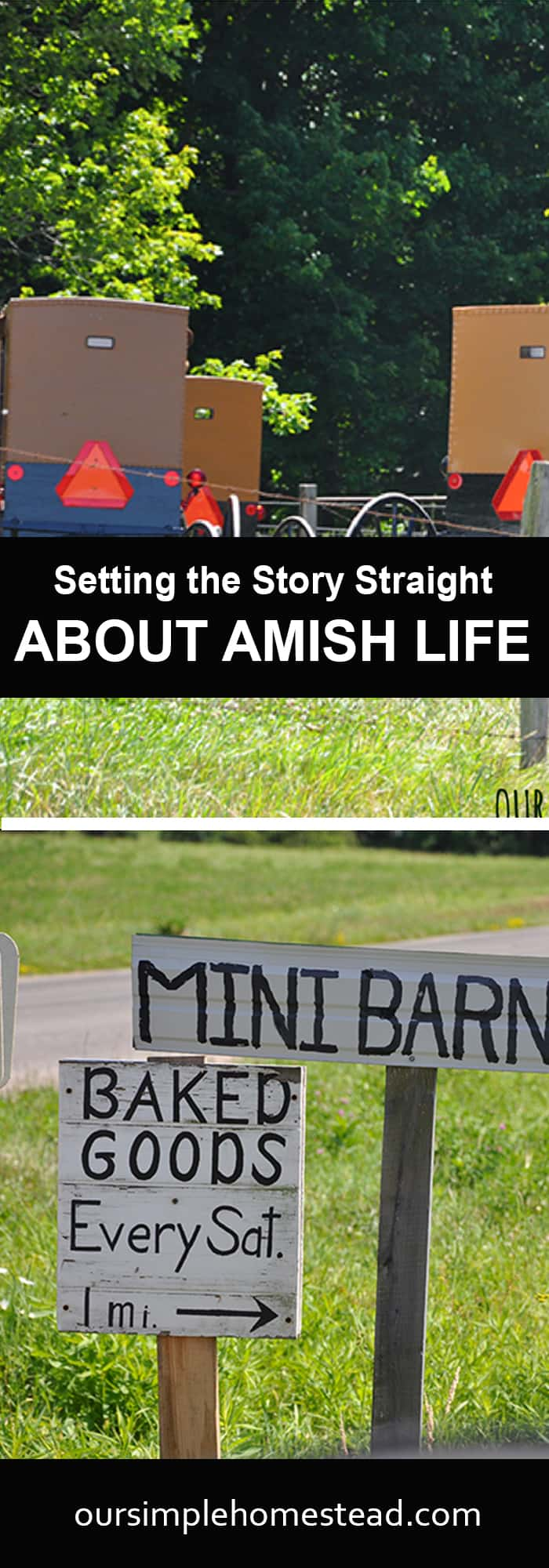 Setting the Story Straight about Amish Life