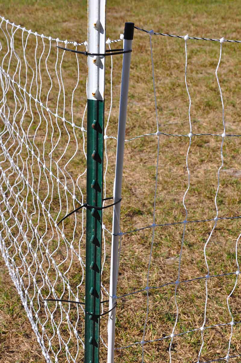 poultry-net-electric-fence