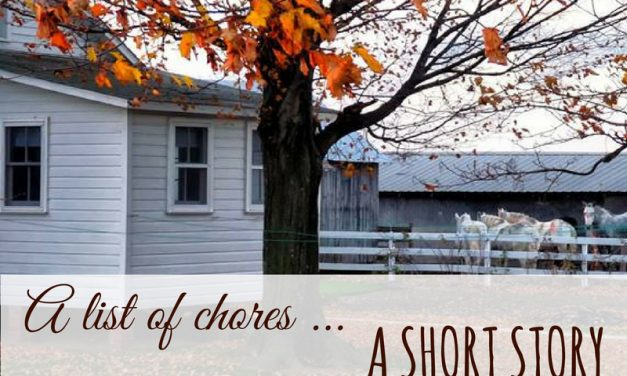 Amish Lifestyle Short Story – A List of Chores