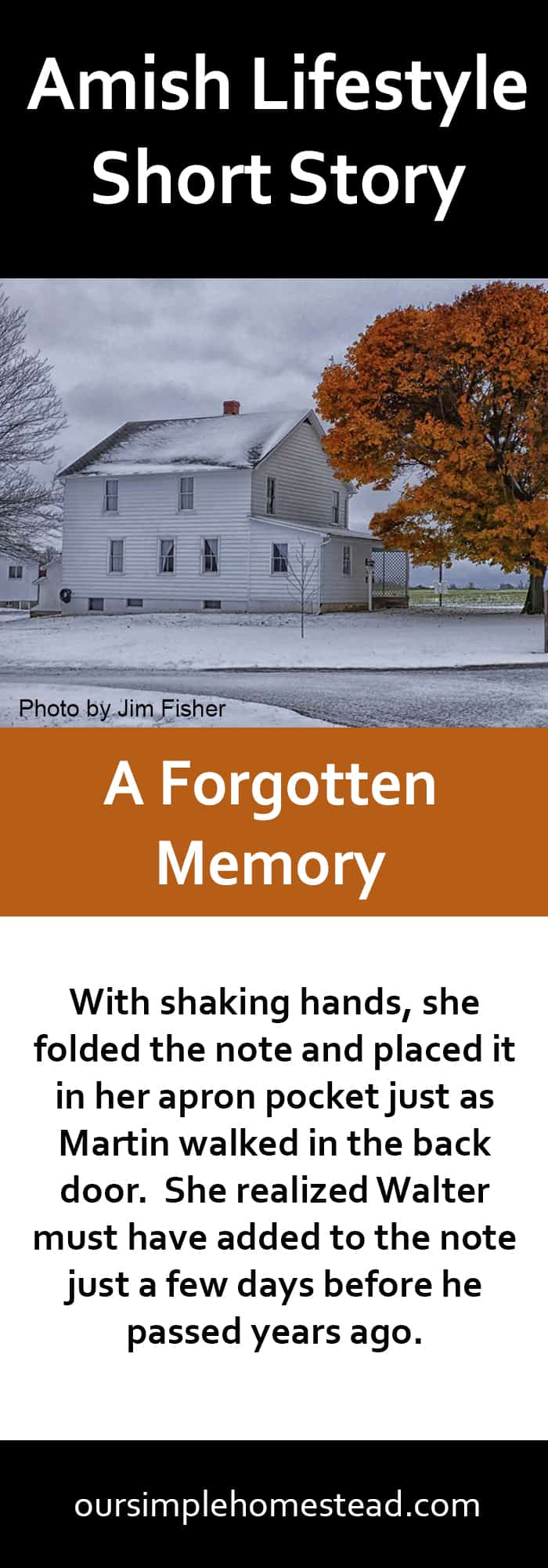 Amish Lifestyle - A Forgotten Memory