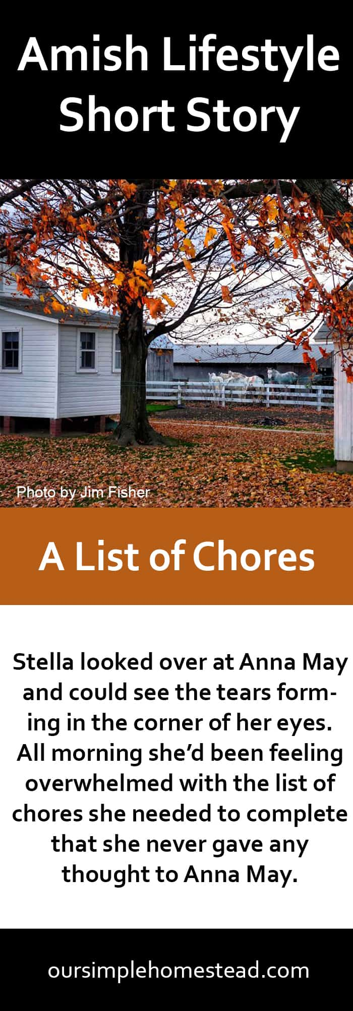 Amish Lifestyle Short Story - A List of Chores