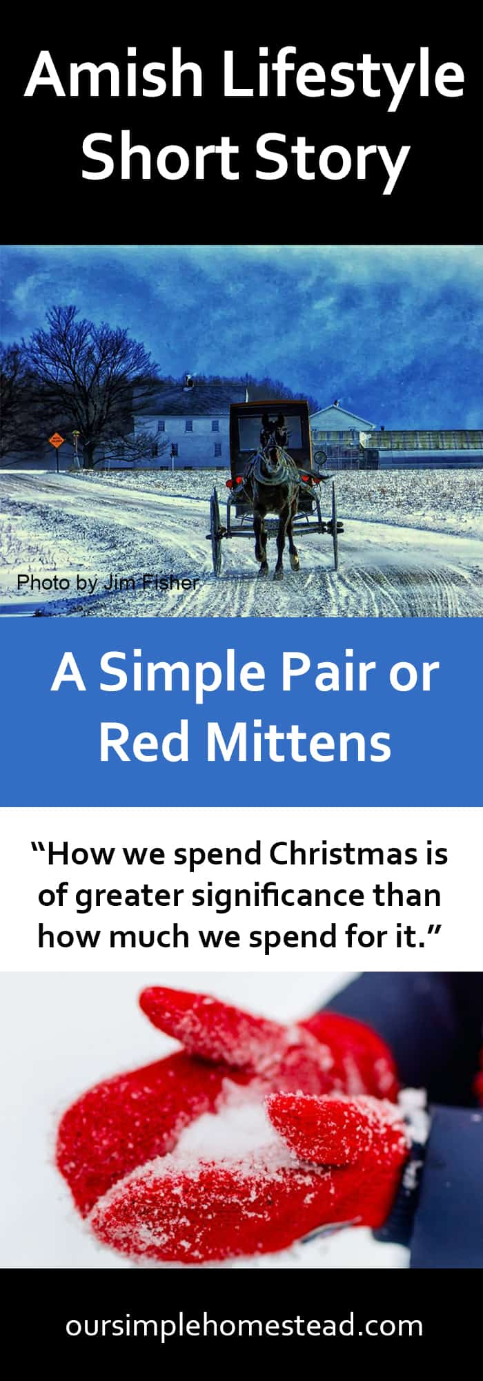 Amish Lifestyle - A Simple Pair of Red MIttens