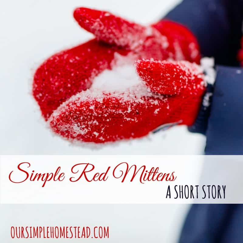 Simple Red Mittens - Amish Short Story