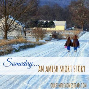 Someday - An Amish Short Story