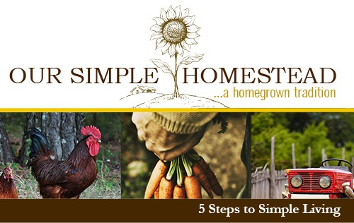 5 Steps to Simple Living