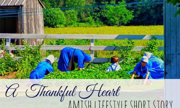 Amish Lifestyle Short Story – A Thankful Heart